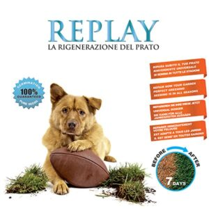 Semi rigenerazione prato Replay