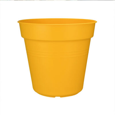 Green basic growpot Elho giallo